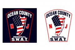OC Regional SWAT Image